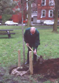 Mr Robin Miller, the great-great grandson of cotton manufacturer Thomas Miller, plants a tree in Winckley Square